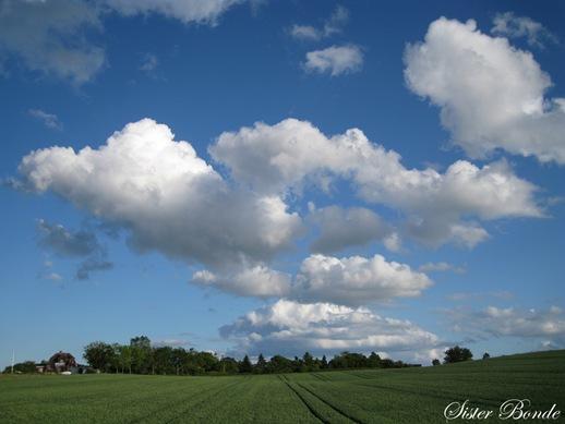 sky by sisterbonde