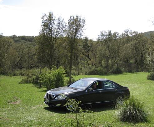 Bjergkørsel bil
